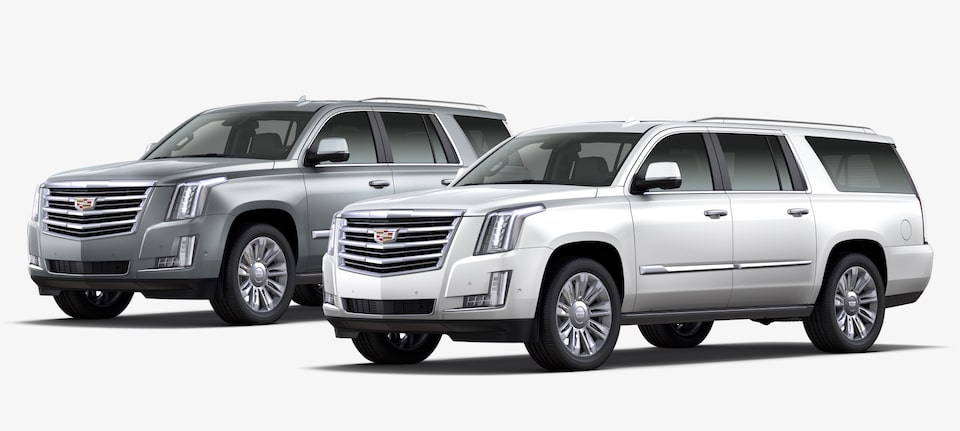 2019 Escalade and ESV SUV Platinum Trim.