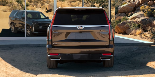Rear view of a 2021 Escalade.